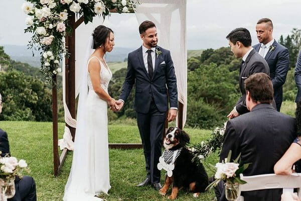 Maleny Manor - Ceremony Bride & Groom and Dog