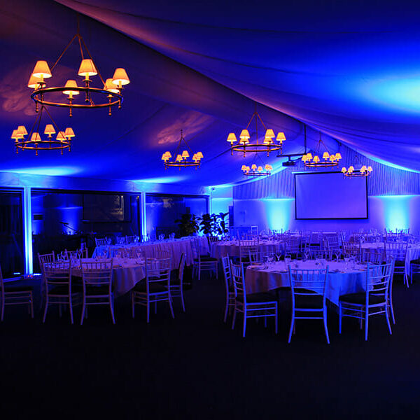 BLUE UPLIGHTING | Garden Marquee at Victoria Park